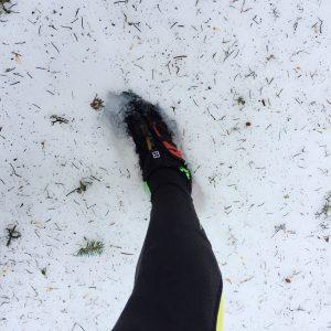 Trail Vosges