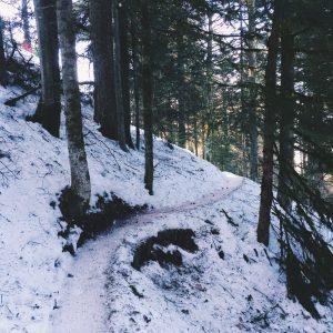 Vosges neige